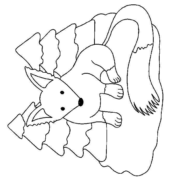 Раскраска Лисица Скачать Животные, котёнок.  Распечатать ,котики,