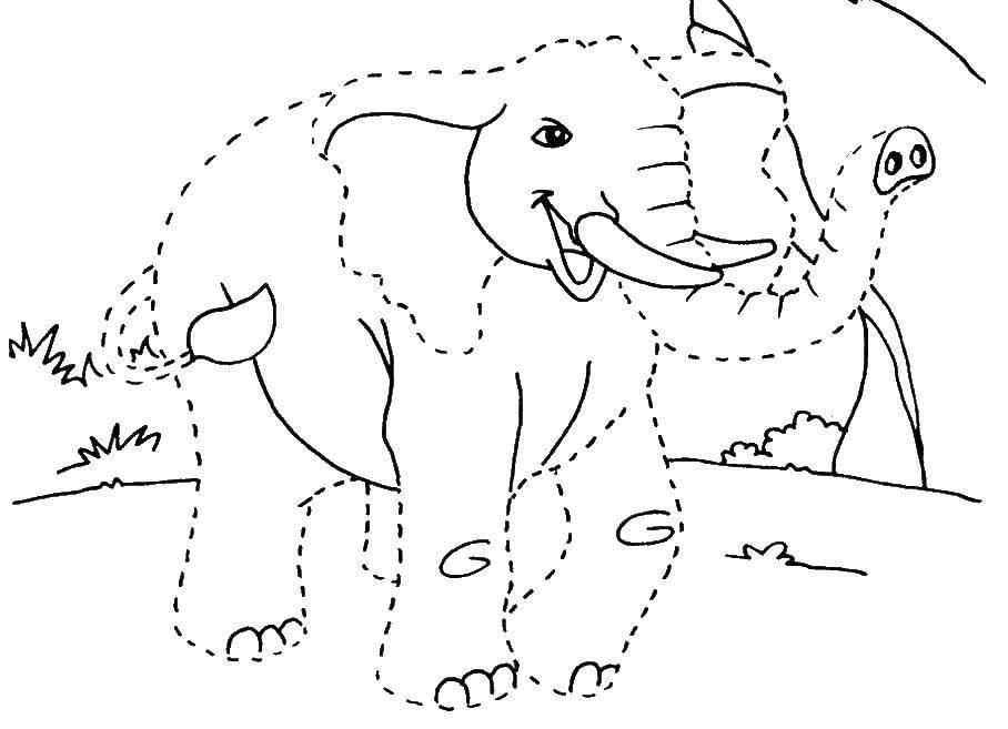 Раскраска Слон Скачать линий.  Распечатать ,Обучающие раскраски,