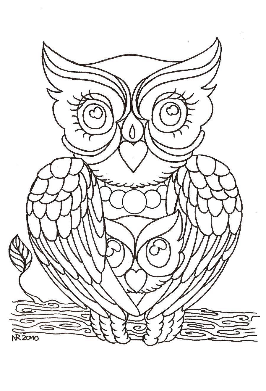Раскраска Сова на ветке дерева Скачать Птицы, сова.  Распечатать ,птицы,