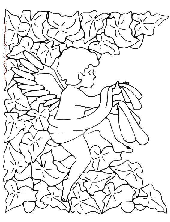 Раскраска Ангел в листве. Скачать ангелы, крылья, листва.  Распечатать ,ангелы,