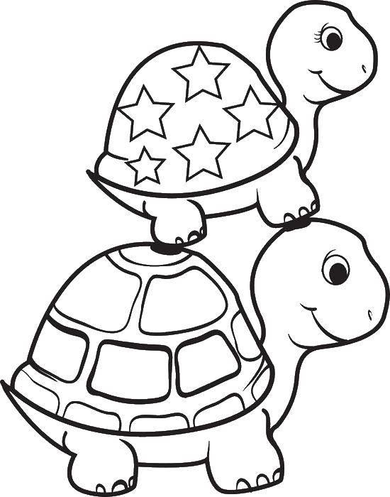 Раскраска Черепашка стоит на другой Скачать Рептилия, черепаха.  Распечатать ,Морская черепаха,