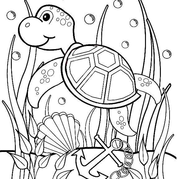 Раскраска Морская черепашка плавает у водорослей. Скачать Рептилия, черепаха.  Распечатать ,Черепаха,