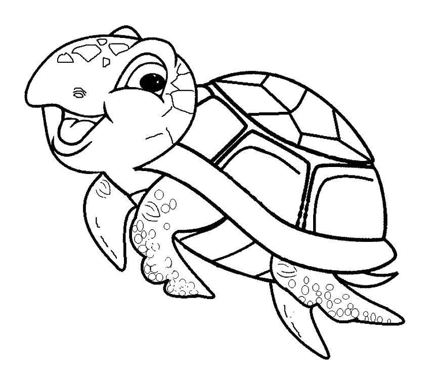 Раскраска Радость черепашки Скачать Рептилия, черепаха.  Распечатать ,Морская черепаха,