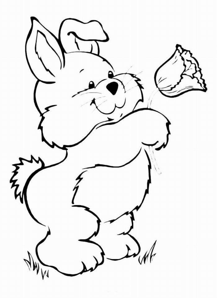 Раскраска домашние животные Скачать Мастер, Шифу, кунг фу панда.  Распечатать ,кунг фу панда,