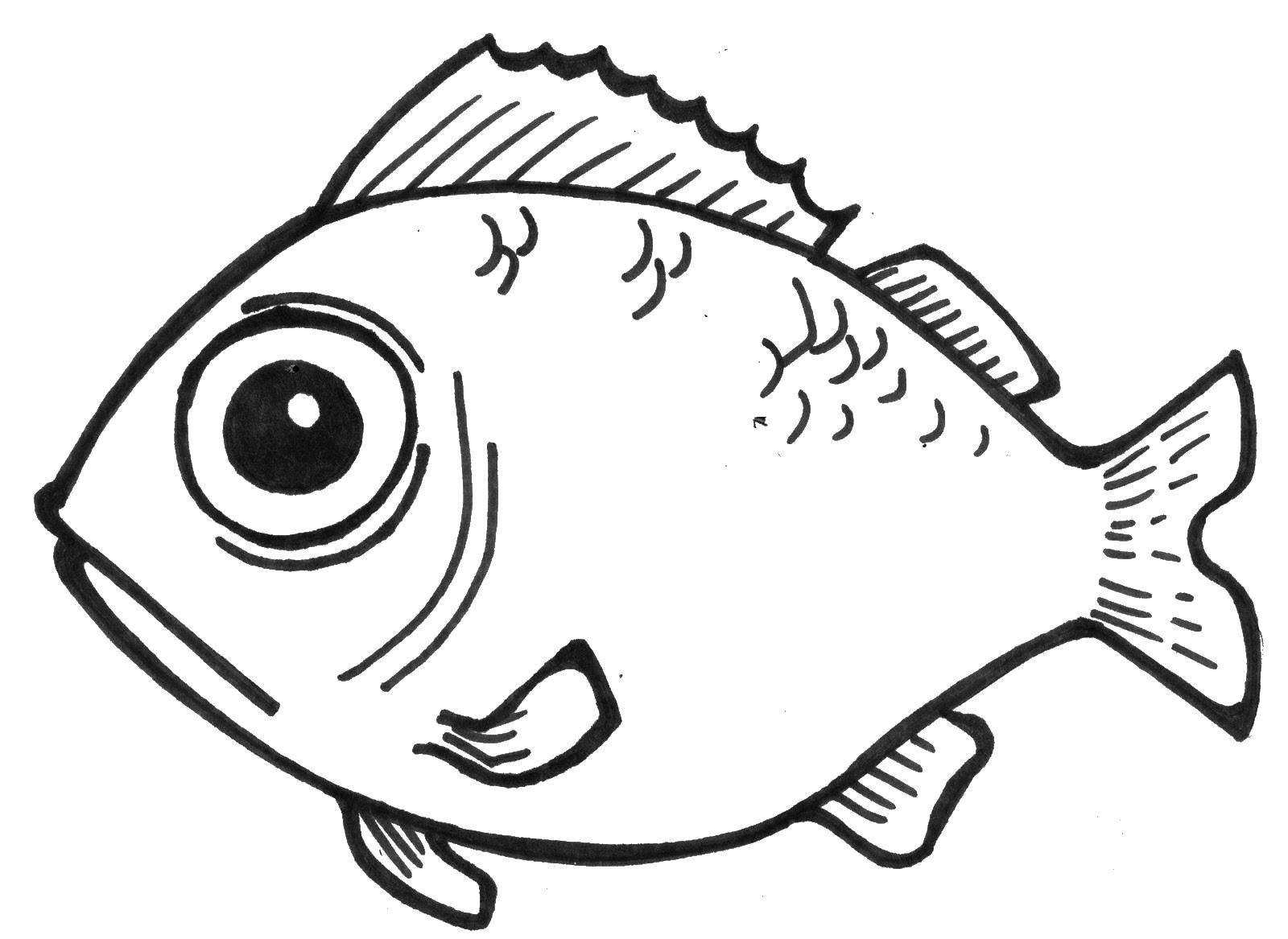 Раскраска Рыбка с большими глазами. Скачать рыбы, глаза, рыбка.  Распечатать ,рыбы,