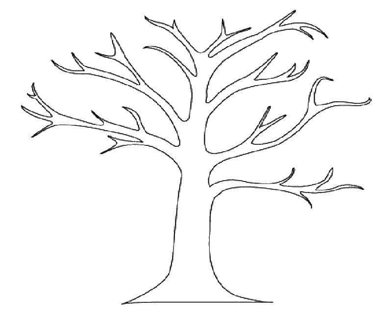 Раскраска дерево Скачать .  Распечатать