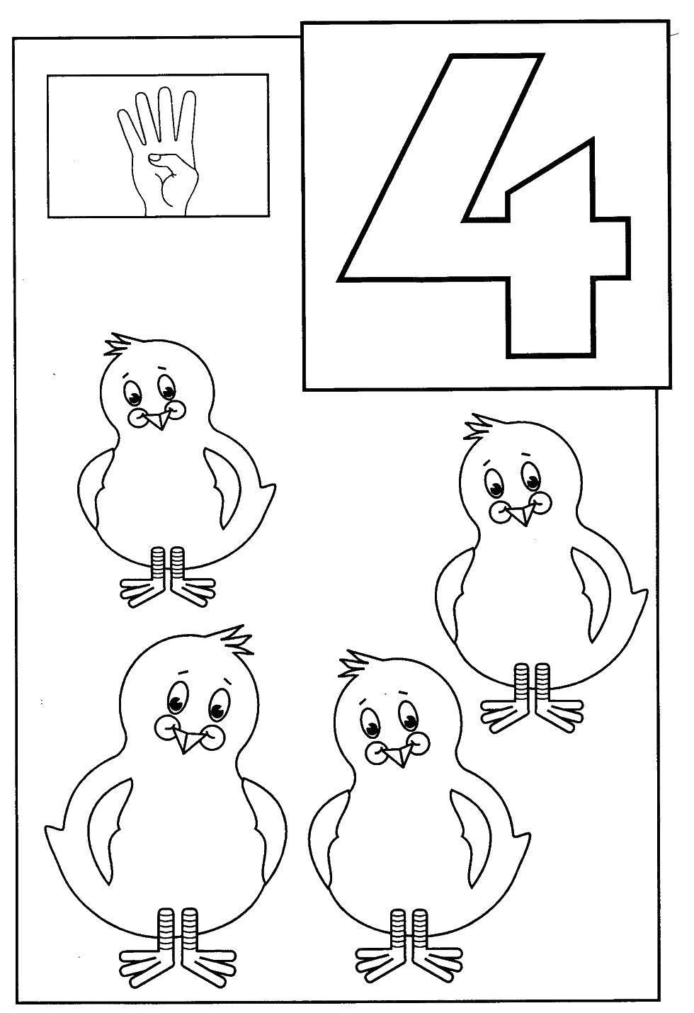 Раскраска 4 цыпленка Скачать ,цифры, 4, цыплята,.  Распечатать