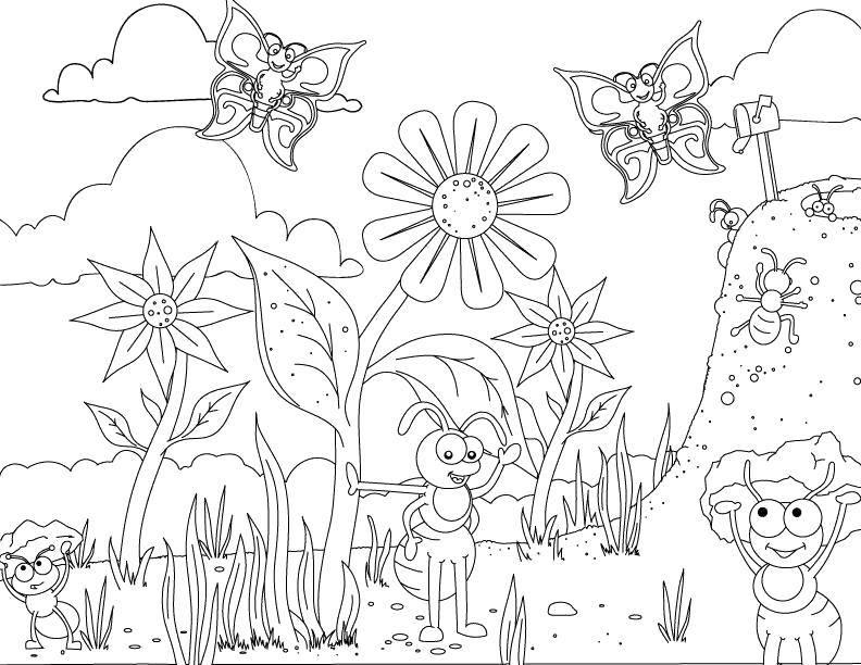 Раскраска Мир насекомых Скачать Насекомые, муравей.  Распечатать ,Насекомые,