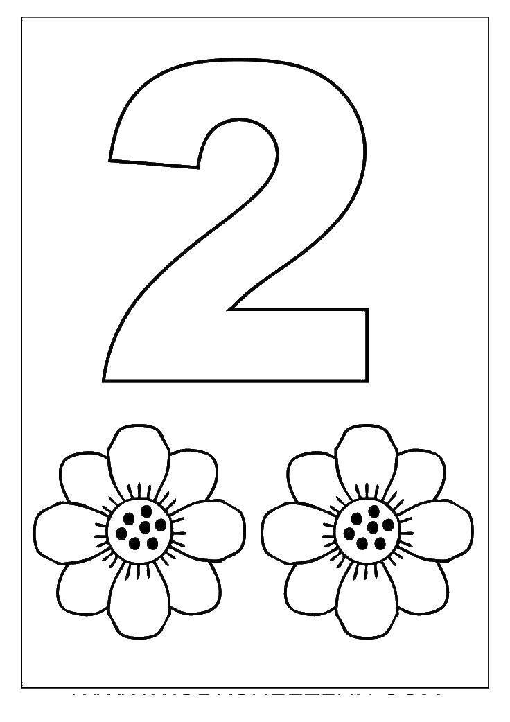 Раскраска Цифра 2 и два цветочка Скачать ,2, цифра, цветы,.  Распечатать