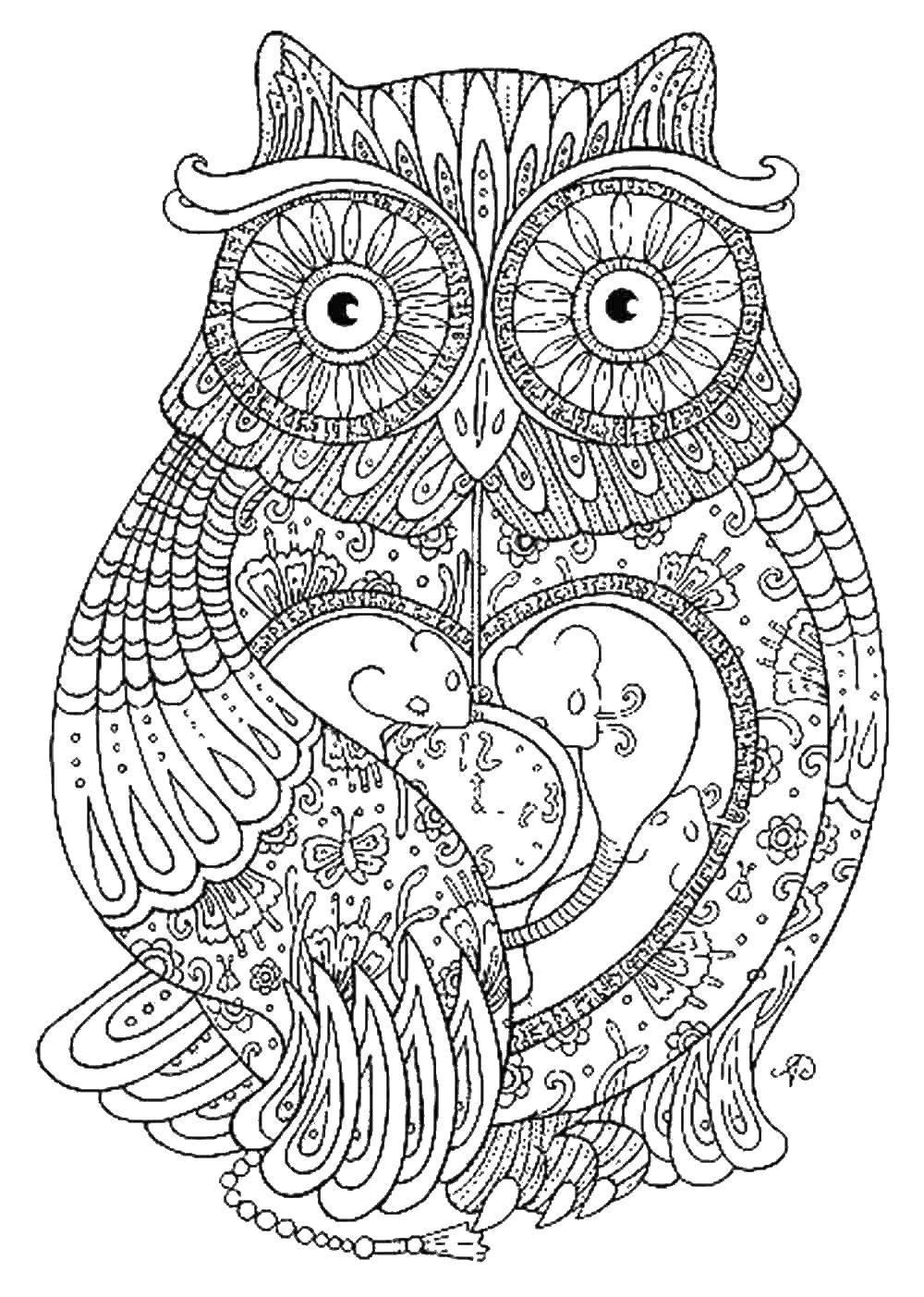 Раскраска Узорчики на сове. Скачать узоры, сова, птица.  Распечатать ,узоры,