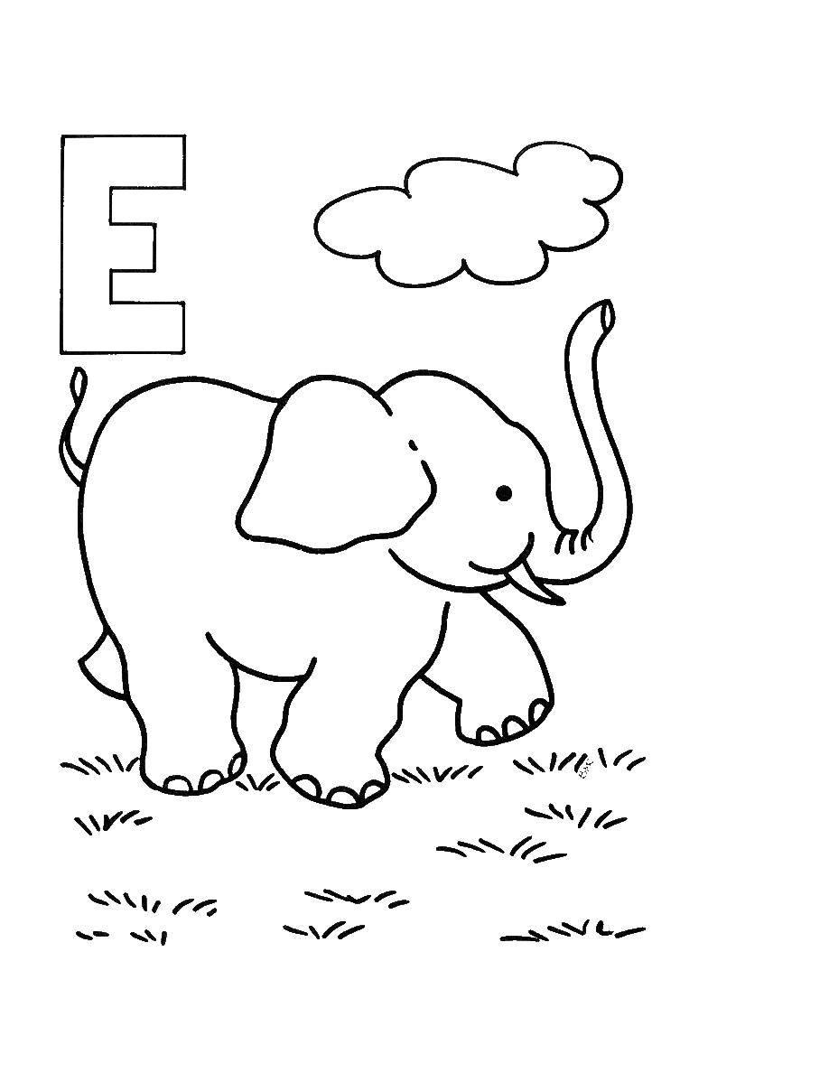 Название: Раскраска Слон на английском. Категория: Английский. Теги: слон, Английский.