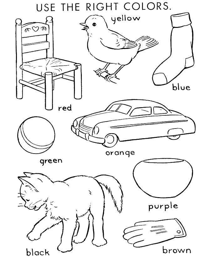 Раскраска Обучающие раскраски Скачать ,цвета, предметы,.  Распечатать