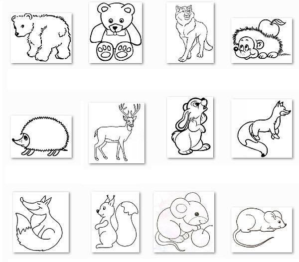 Раскраска Картинки с животными Скачать катринка.  Распечатать ,домашние животные,