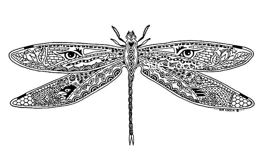 Раскраска Красивая стрекоза из узоров Скачать Узоры, стрекоза.  Распечатать ,узоры,