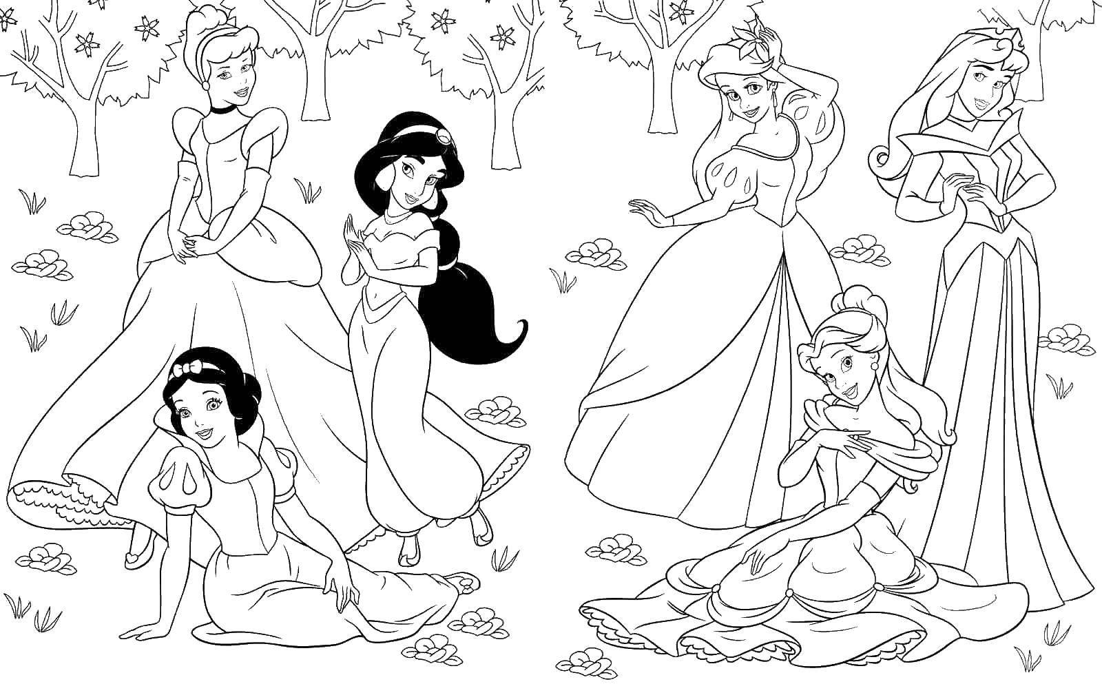 Раскраска Принцессы в лесу Скачать принцессы, лес, Дисней, Диснеевские мультфильмы.  Распечатать ,Принцессы,