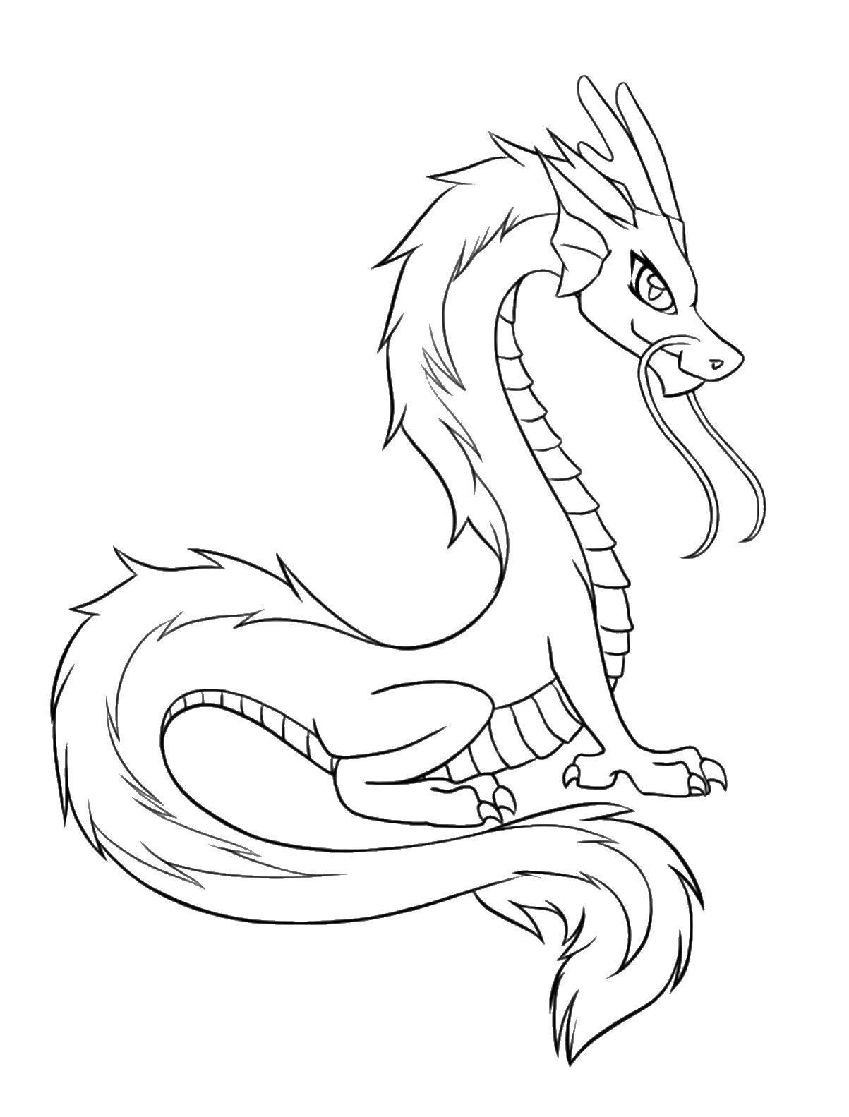 Раскраска Дракон змей Скачать драконы, змеи.  Распечатать ,Драконы,