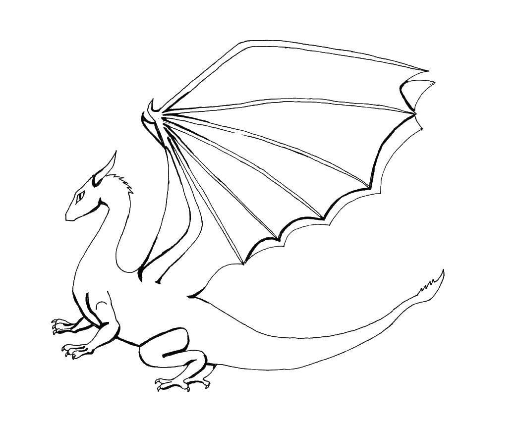Раскраска Дракоша с большими крыльями. Скачать Драконы.  Распечатать ,Драконы,