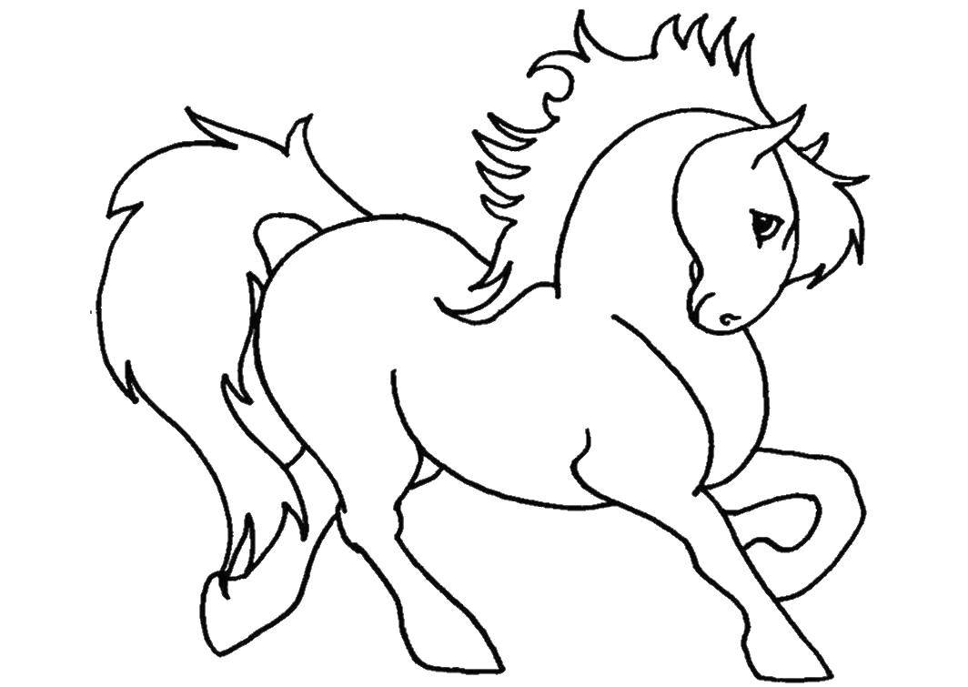 Раскраска Игривая лошадь Скачать Животные, лошадь.  Распечатать ,Животные,