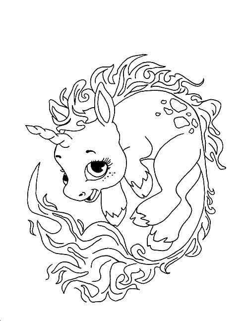 Раскраска Миленький дракончик единорог. Скачать единороги, драконы, лошадки.  Распечатать ,единороги,