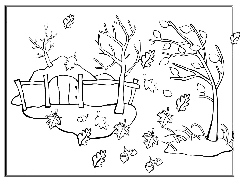 Раскраска Осенний ветер срывает листья с деревьев Скачать Лес, осень, листья.  Распечатать ,Природа,