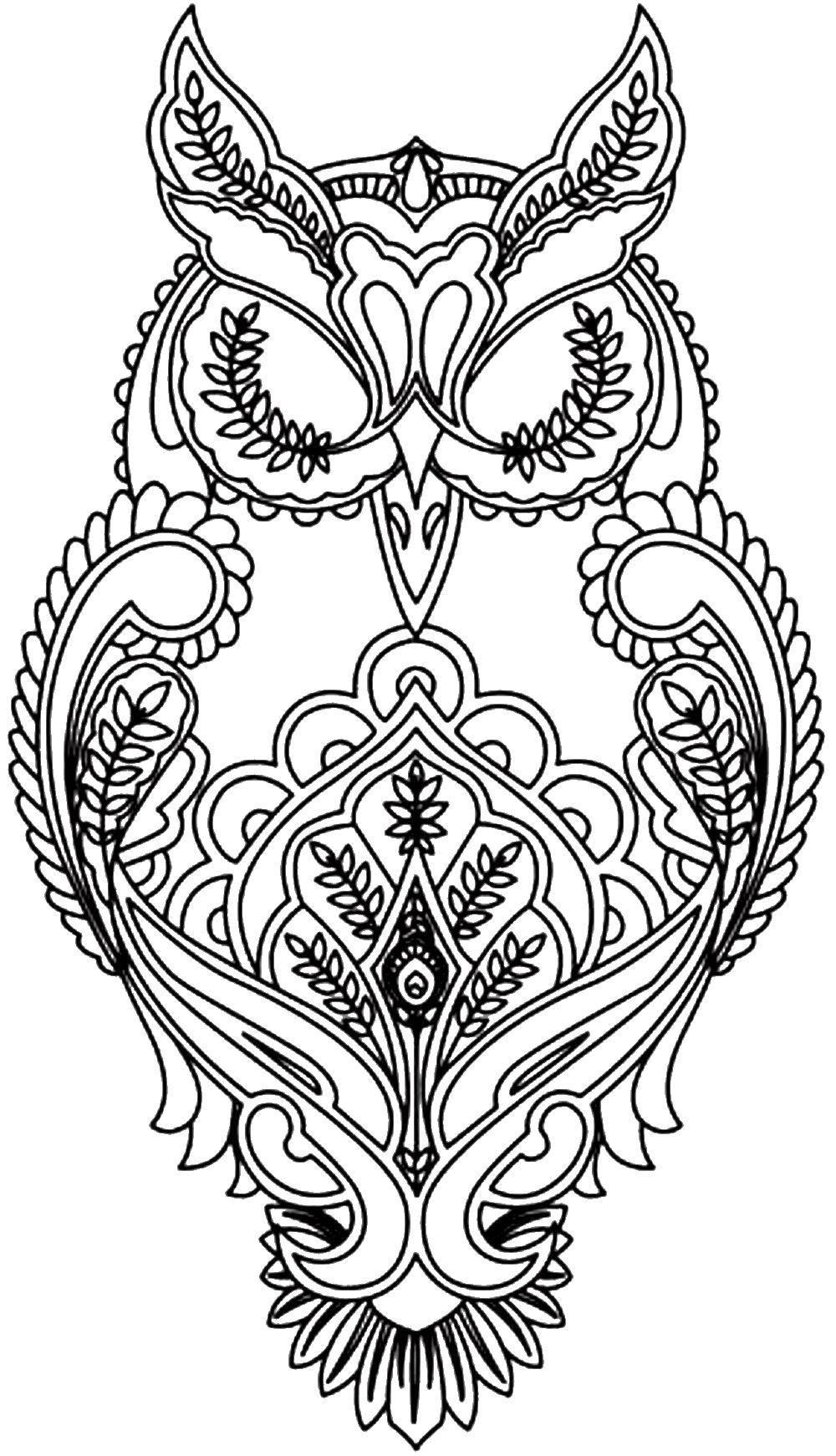 Раскраска Узорчатая сова Скачать птицы, совы, сова, узоры.  Распечатать ,птицы,