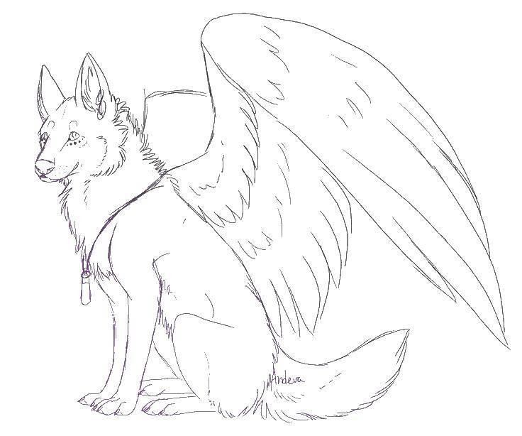 Раскраска Волк с крыльями Скачать волк, крылья.  Распечатать ,Волшебные создания,