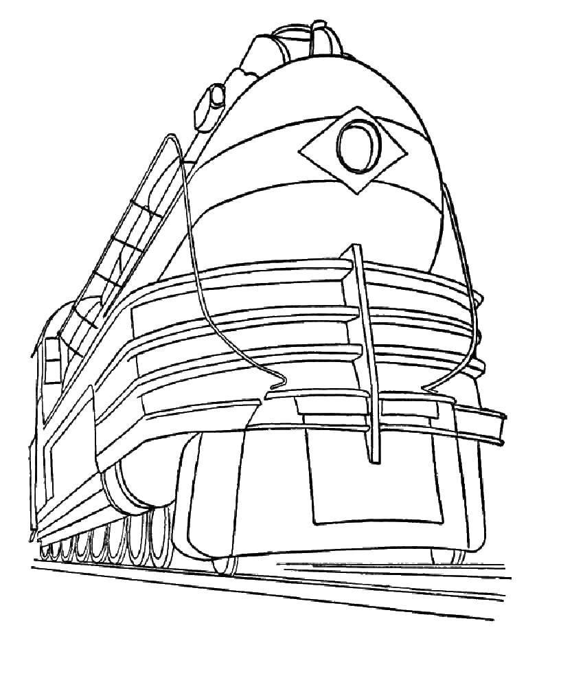 Раскраска поезд Скачать следы животных, кошка.  Распечатать ,Следы животных,
