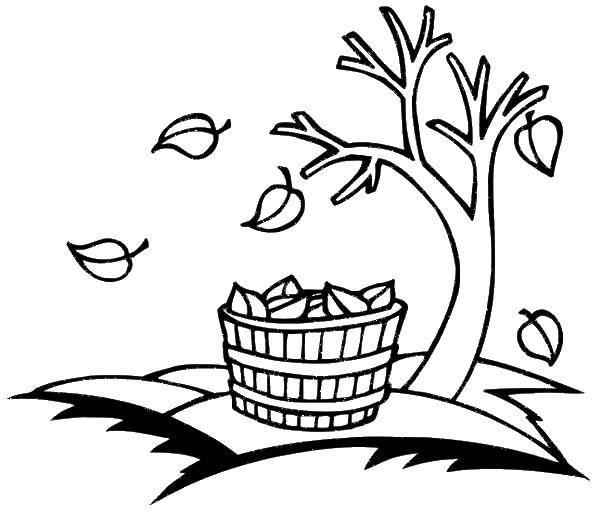 Раскраска Коробка осенних листьев Скачать Осень, листья.  Распечатать ,Осень,