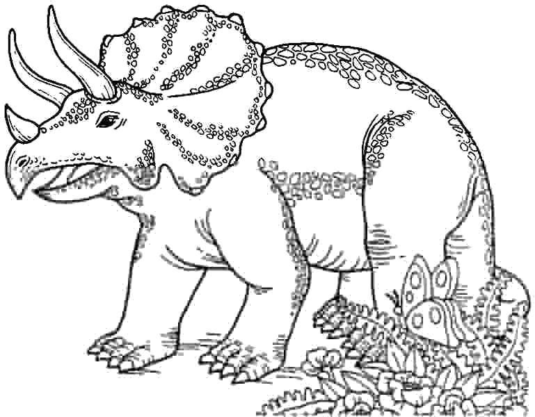 Раскраска Трицератопс и бабочка Скачать Динозавры.  Распечатать ,парк юрского периода,