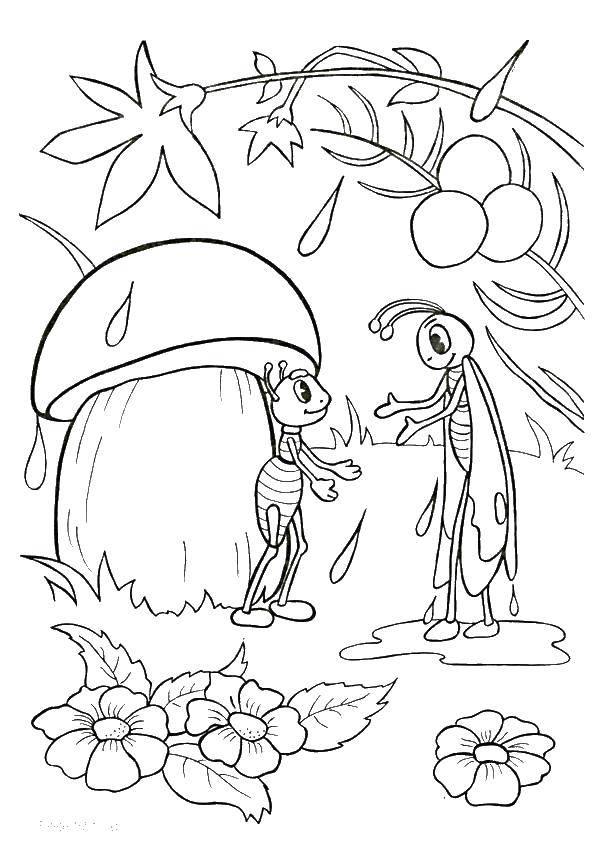 Раскраска лес Скачать ,Лес, дождь, кузнечик, муравей,.  Распечатать