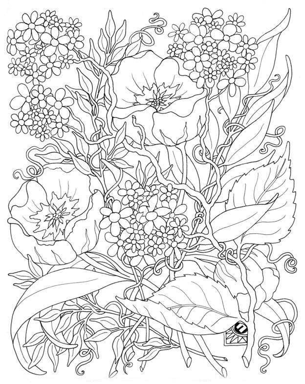 Раскраска цветы Скачать .  Распечатать