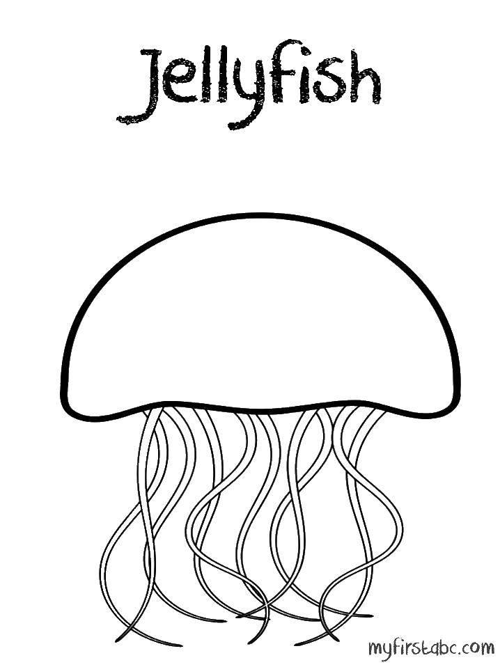 Раскраска Медуза может ударить током Скачать Подводный мир, медуза.  Распечатать ,Морские обитатели,