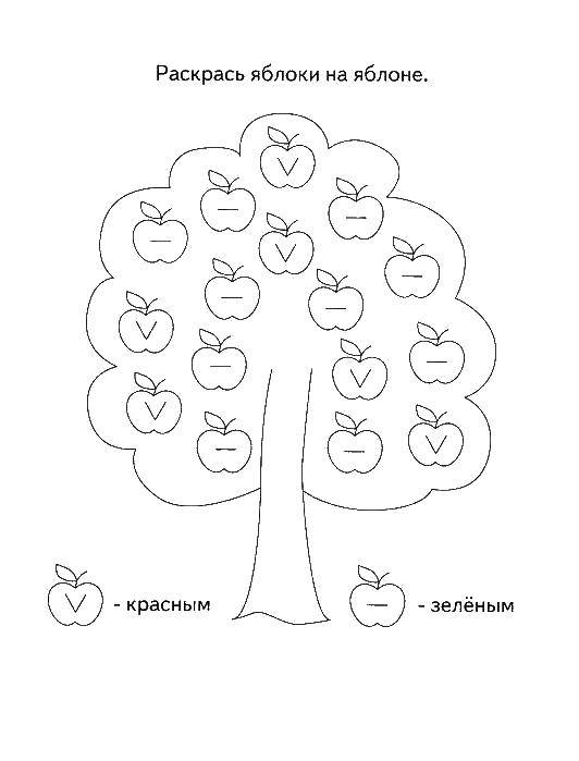 Раскраска Раскрась яблочки разными цветами Скачать ,Логика,.  Распечатать