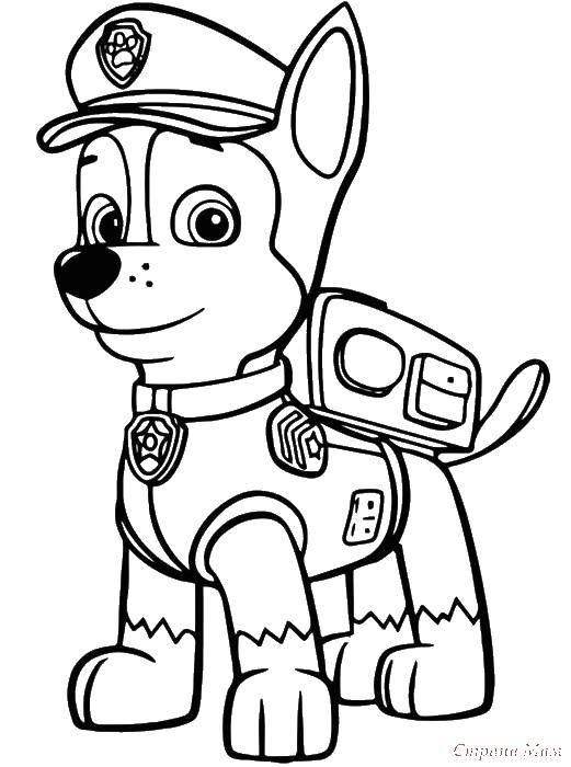раскраски мел раскраска смельчак щенячий патруль