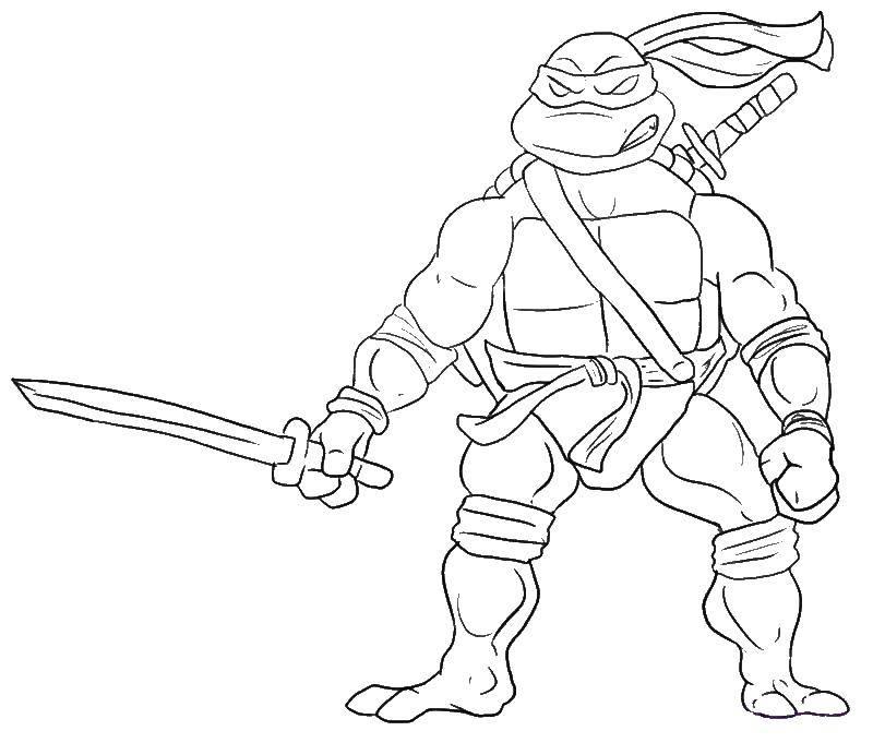 Раскраска Черепашка с мечем. Скачать меч, черепашка ниндзя.  Распечатать ,черепашки ниндзя,