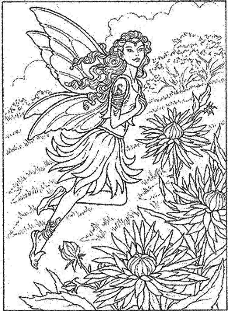 Раскраска Фея над цветочками. Скачать цветы, фея, цветочки.  Распечатать ,цветы,
