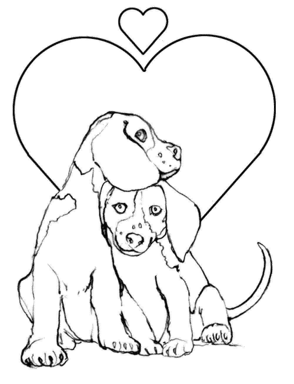Раскраска Любовь собачек Скачать животные, собаки, любовь, псы.  Распечатать ,домашние животные,