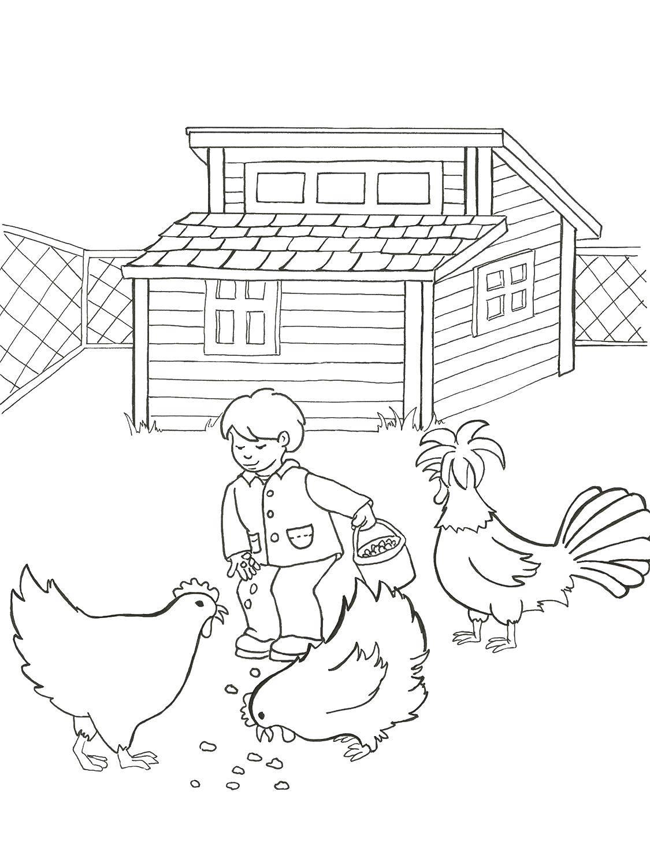 Раскраска Мальчик кормит курочек Скачать ферма.  Распечатать ,ферма,
