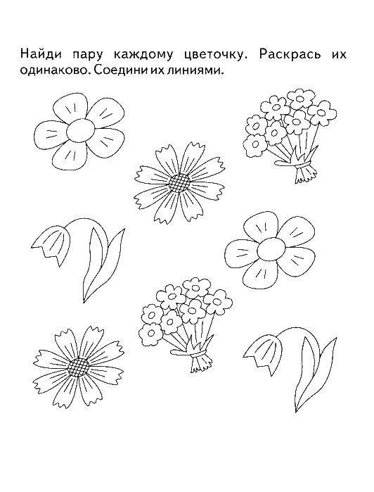 Раскраска Найди пару для цветочков Скачать Логика.  Распечатать ,раскраски на логику,