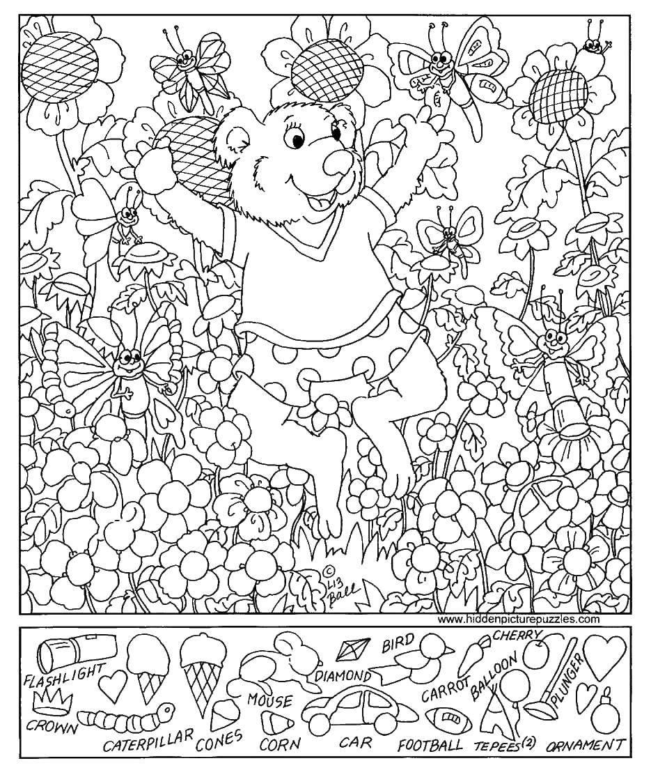 Раскраска Найди предметы Скачать ,предметы, мишка, цветы,.  Распечатать
