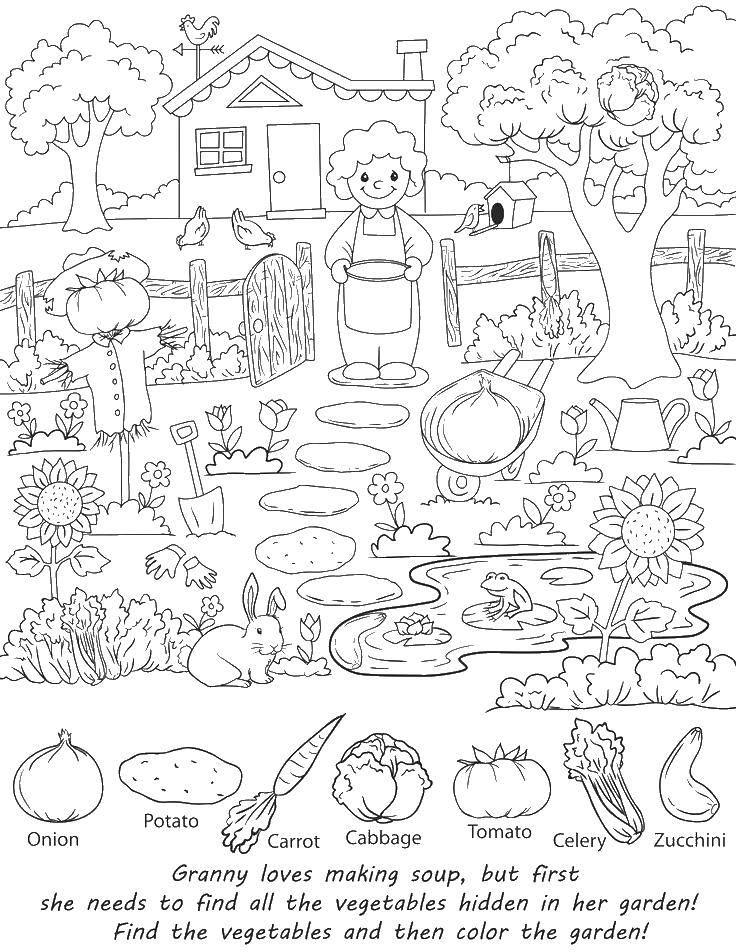 Раскраска Помоги найти овощи для суппа Скачать найди предметы, предметы, овощи, на мышление.  Распечатать ,Найди что спрятано,