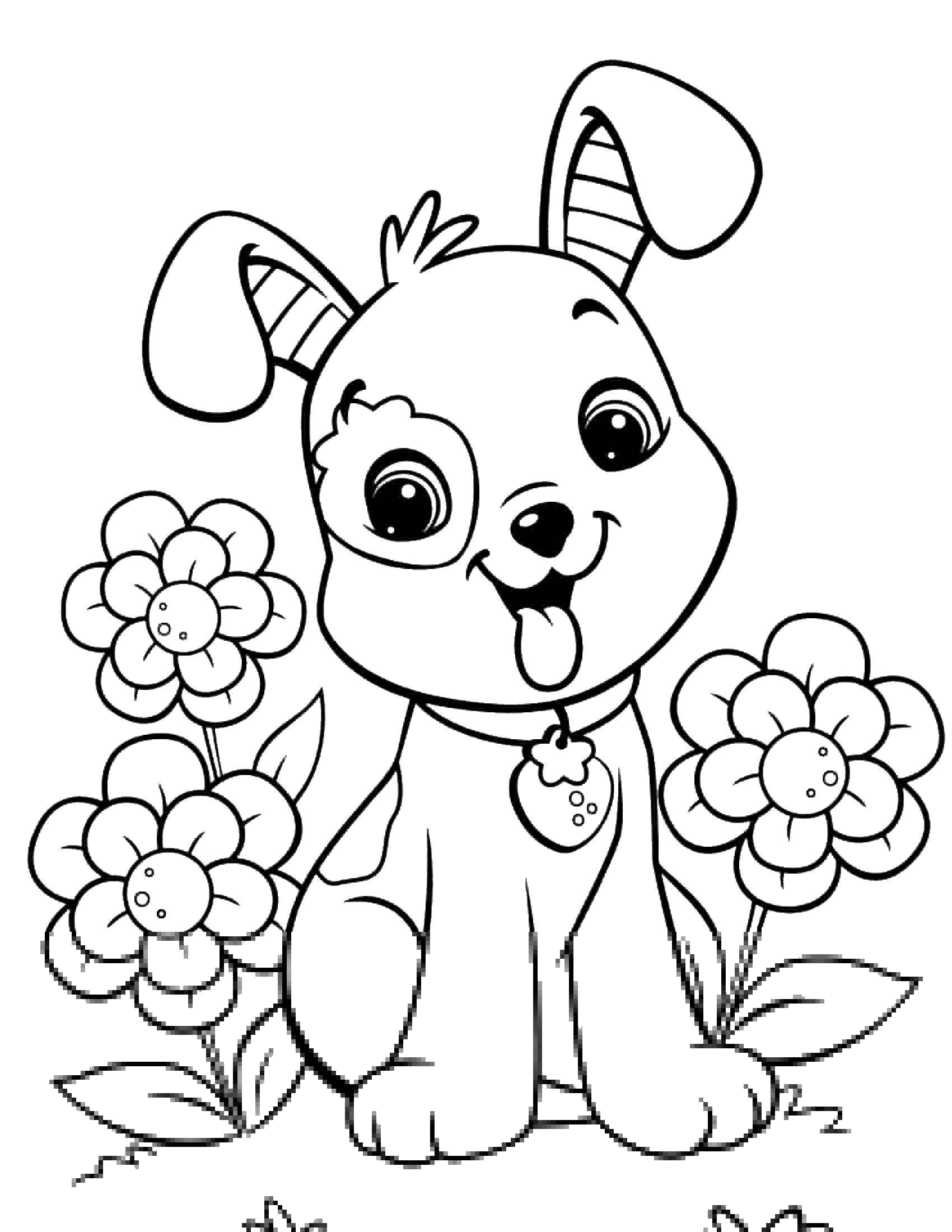 Раскраска Собачка с цветочками. Скачать животные, собаки, цветы.  Распечатать ,домашние животные,