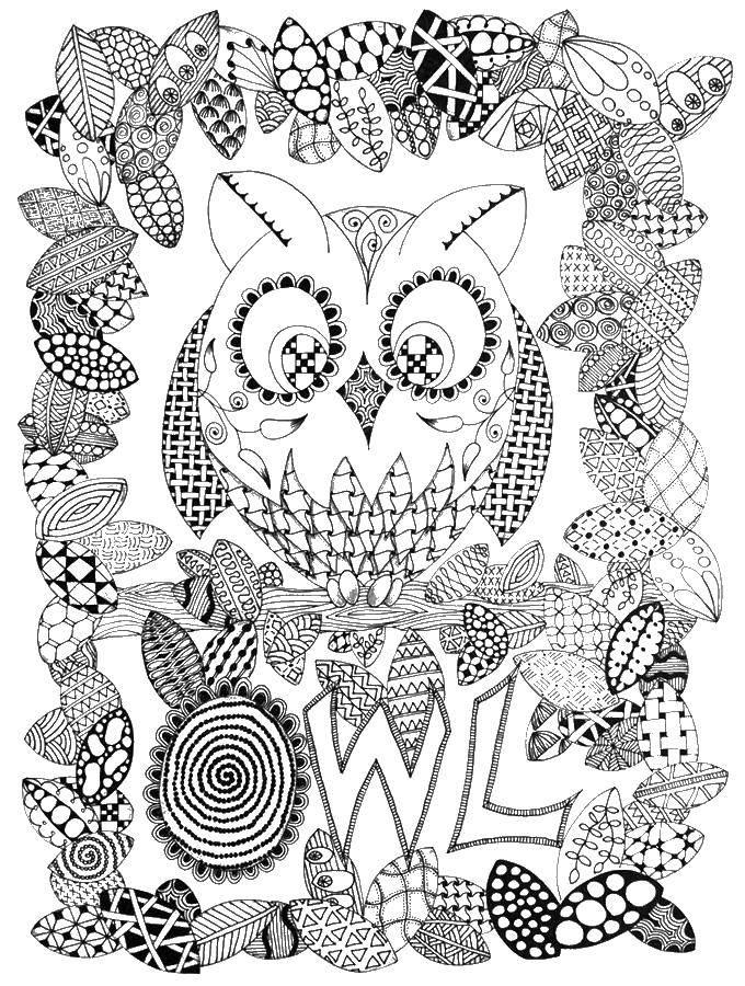 Раскраска Сова и листва в узорах Скачать антистресс, узоры, совы.  Распечатать ,Антистресс,