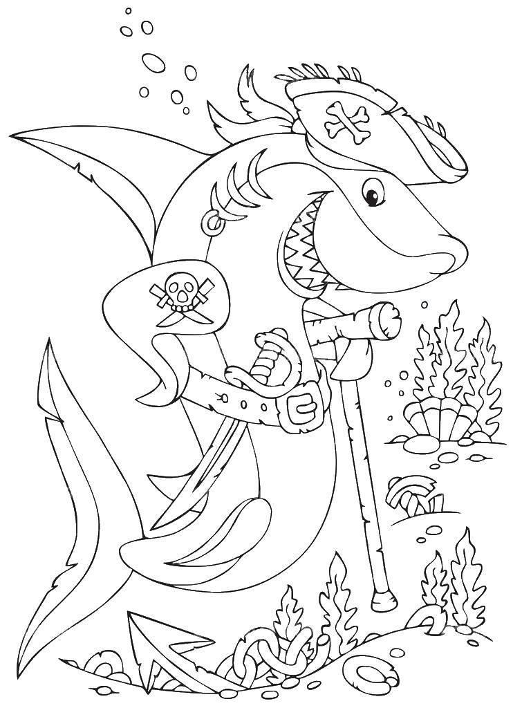 Раскраска Акула пират. Скачать пират, акула.  Распечатать ,Пираты,