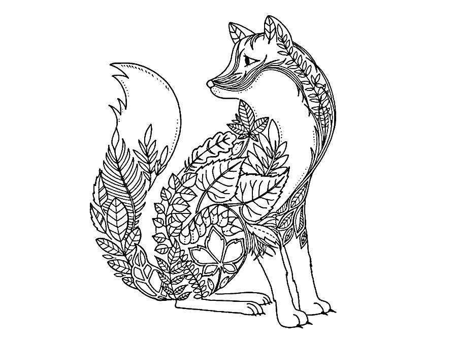 Раскраска Лисица из узоров Скачать Узор, животные, лиса.  Распечатать ,узоры,