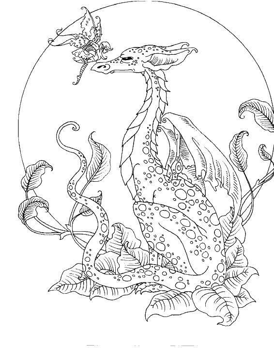 Раскраска Фея на носу дракона Скачать ,Фантастические создания,.  Распечатать