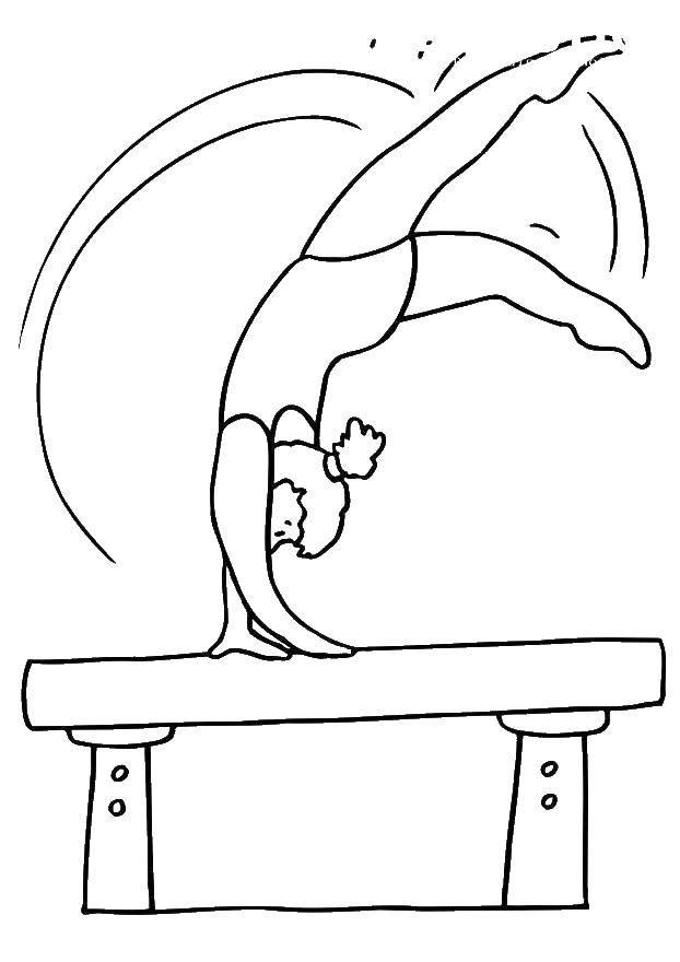 Раскраска Гимнастка на осле. Скачать гимнастика, гимнасты.  Распечатать ,гимнастика,