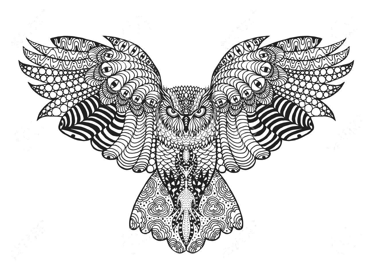 Раскраска Сова  из узоров парит в воздухе Скачать Узор, животные, сова.  Распечатать ,раскраски антистресс,