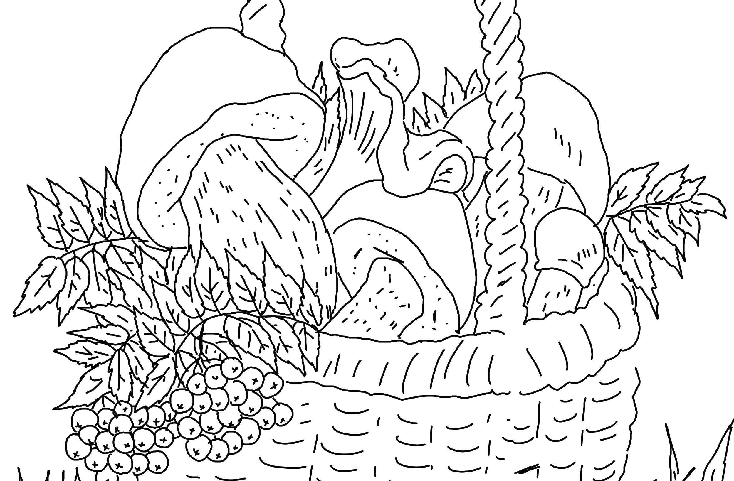Раскраска грибы Скачать ,грибы, корзина,.  Распечатать