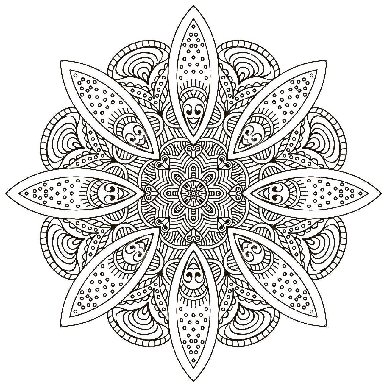 раскраски узором раскраска цветы узором раскраски антистресс